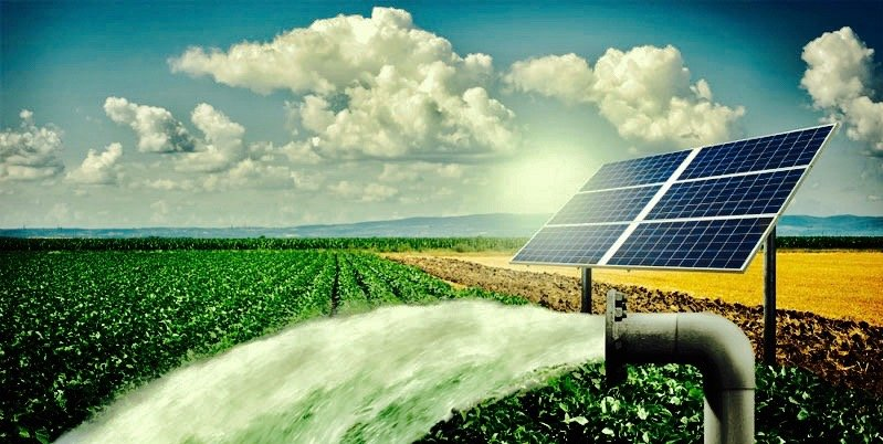 Solar Irrigation Solutions